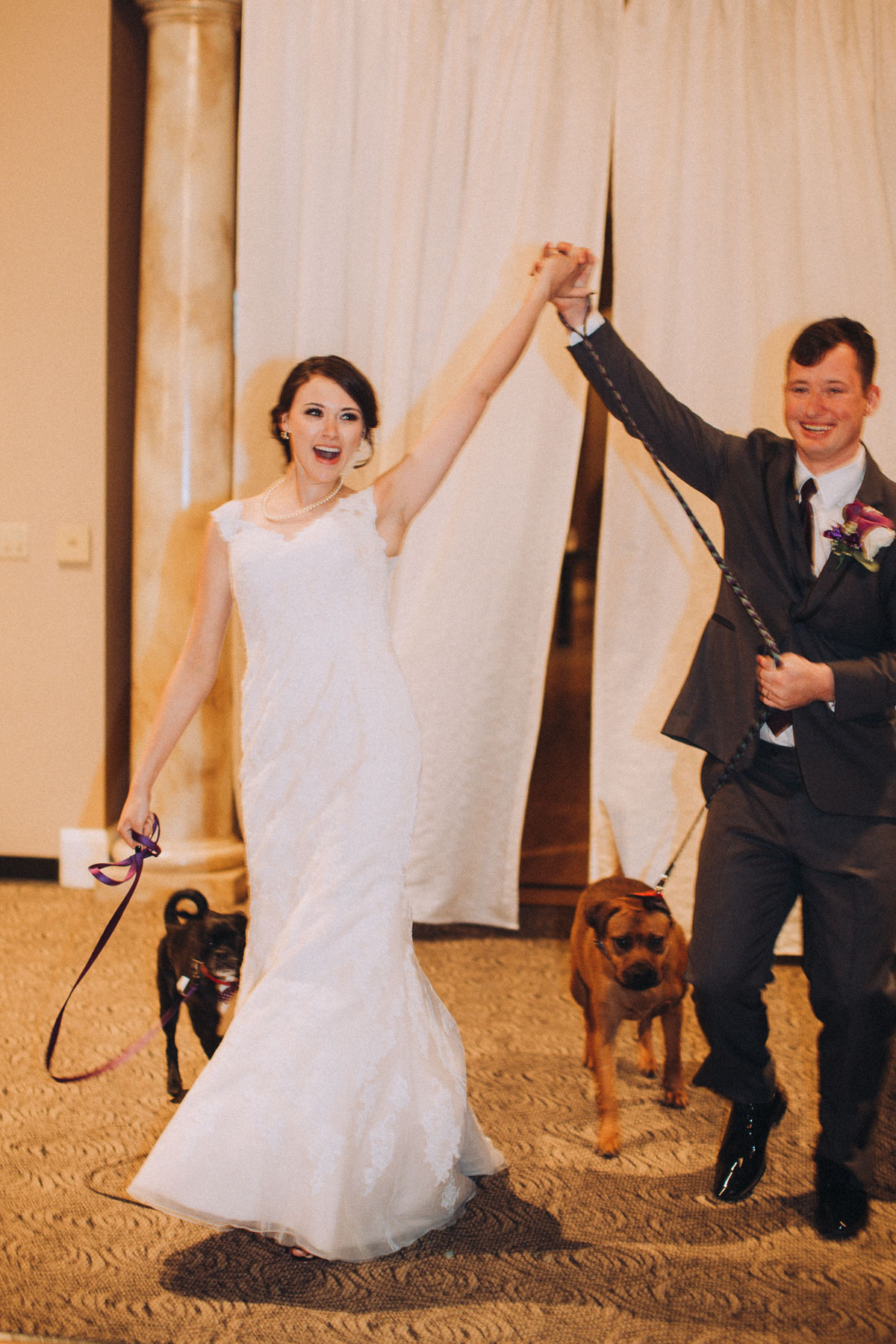 Bride and groom announced during their wedding reception with hands raised and pet dogs at their feet.