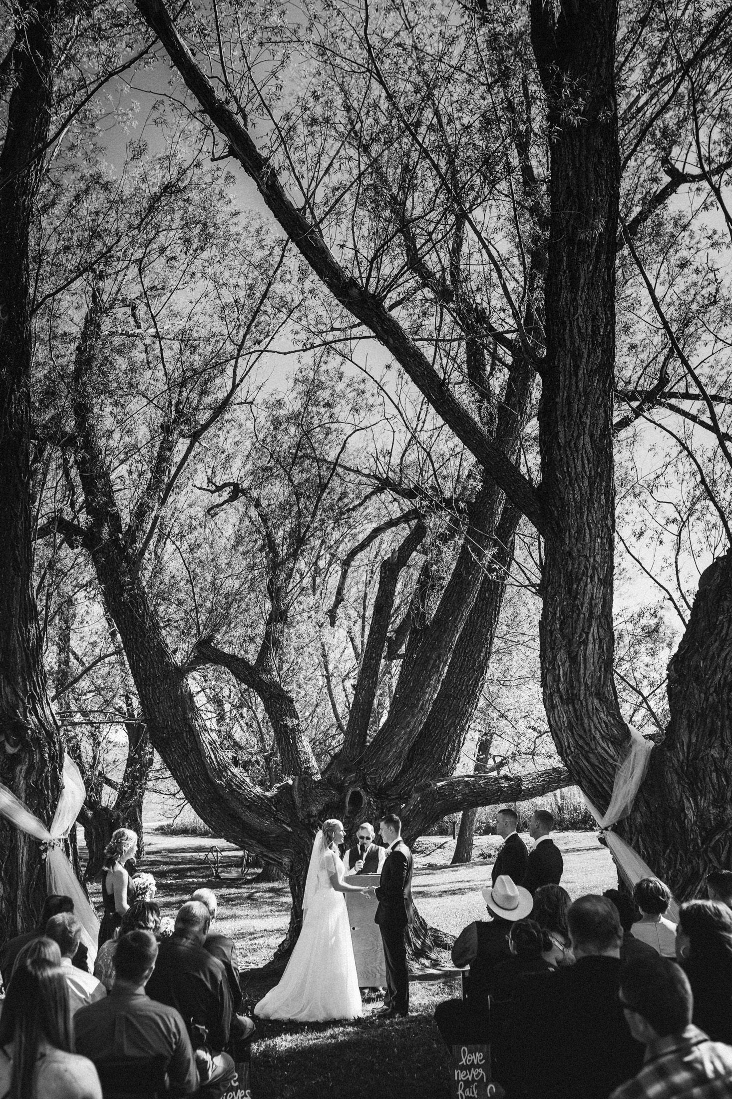 Black and white photograph of wedding ceremony underneath Willow trees at Willow Vale Events.