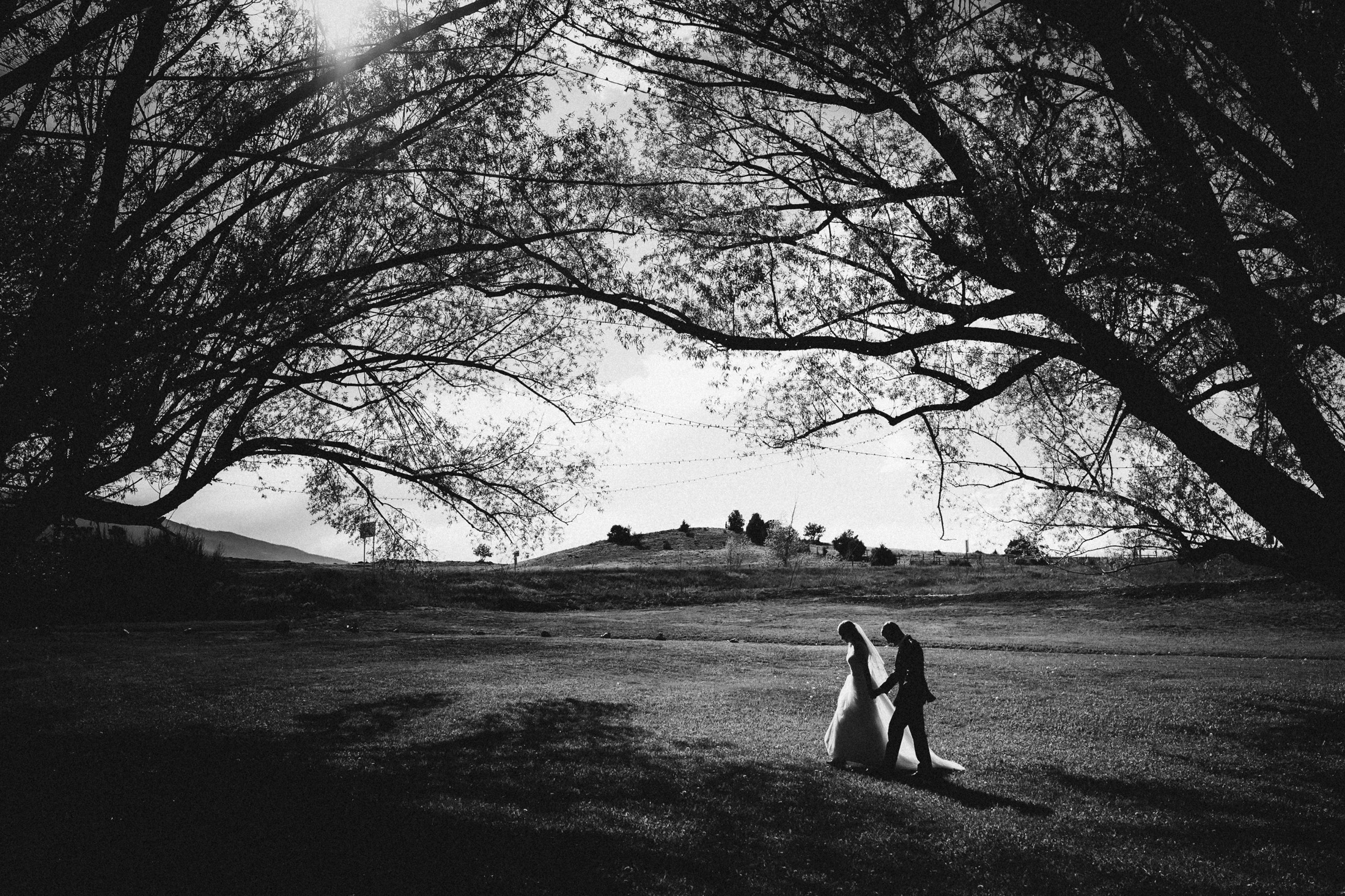 Black and white photograph of bride and groom walking underneath Willow trees.