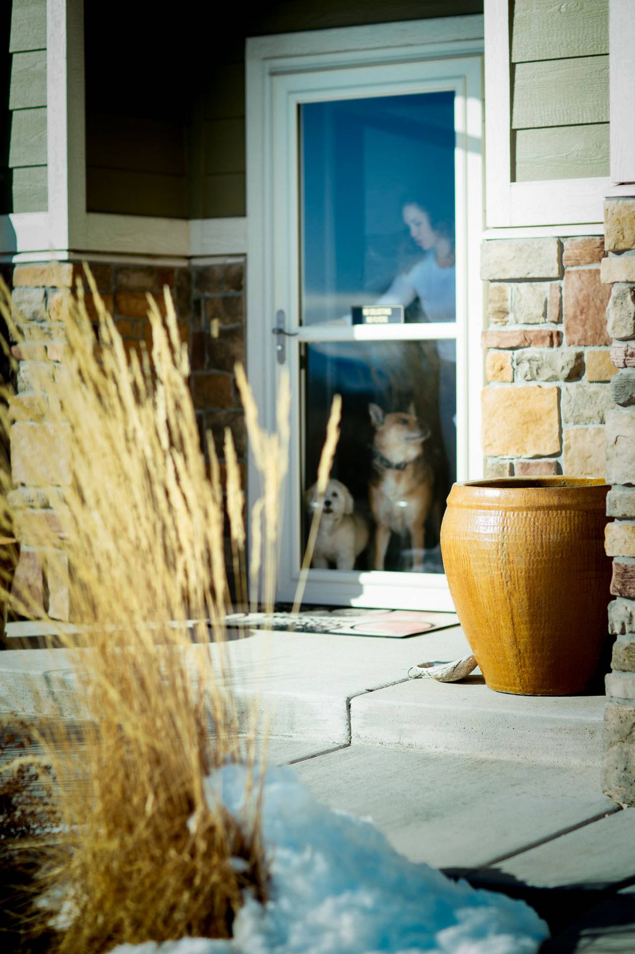 Woman opens door for dogs at her home.