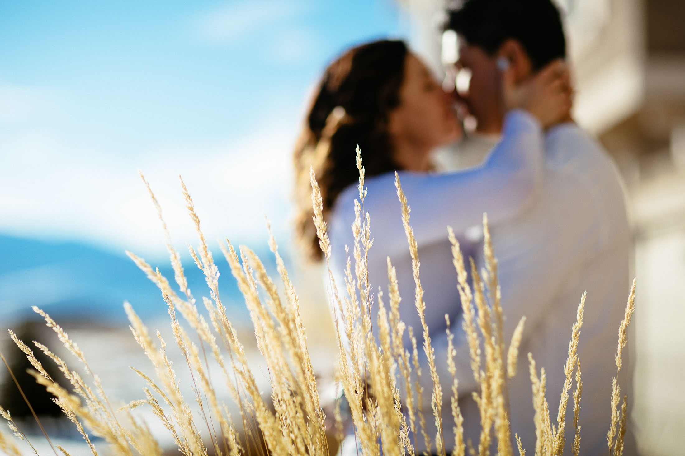 Tall grass in the foreground with couple kissing in front of their home.